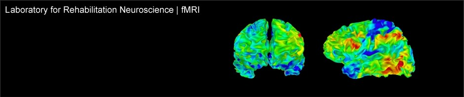 fMRI_banner_color